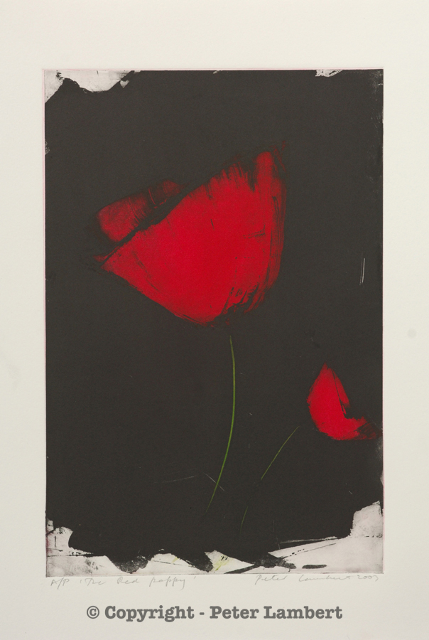 The Red Poppy - 2003