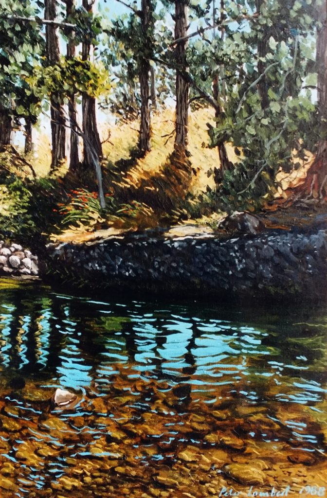 """Hangatahua/Stony River, Pine tree bend"" - 1988"