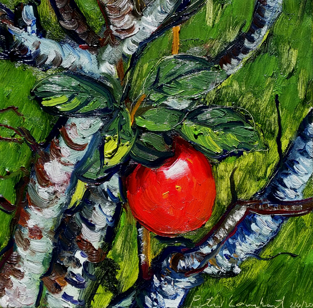 Red Delicious - 2020, 205x205mm Oil on canvas Sold
