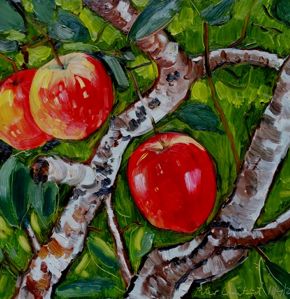 Three Red Delicious - 2020, 300x300mm Oil on board